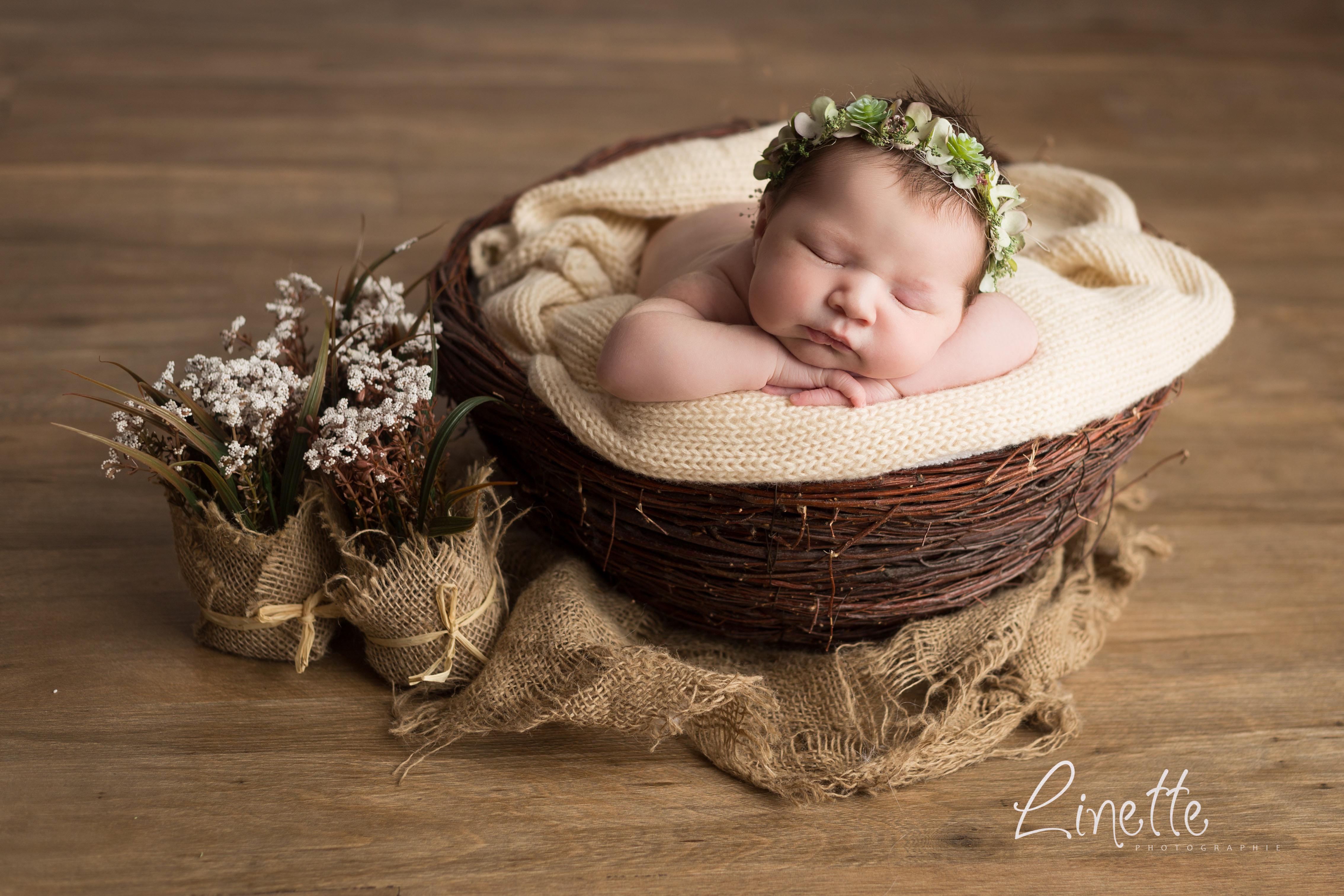 Linette Photographie photo bébé fleur corbeille